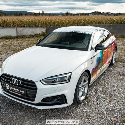 Audi-A5-Watercolor-DSC8816